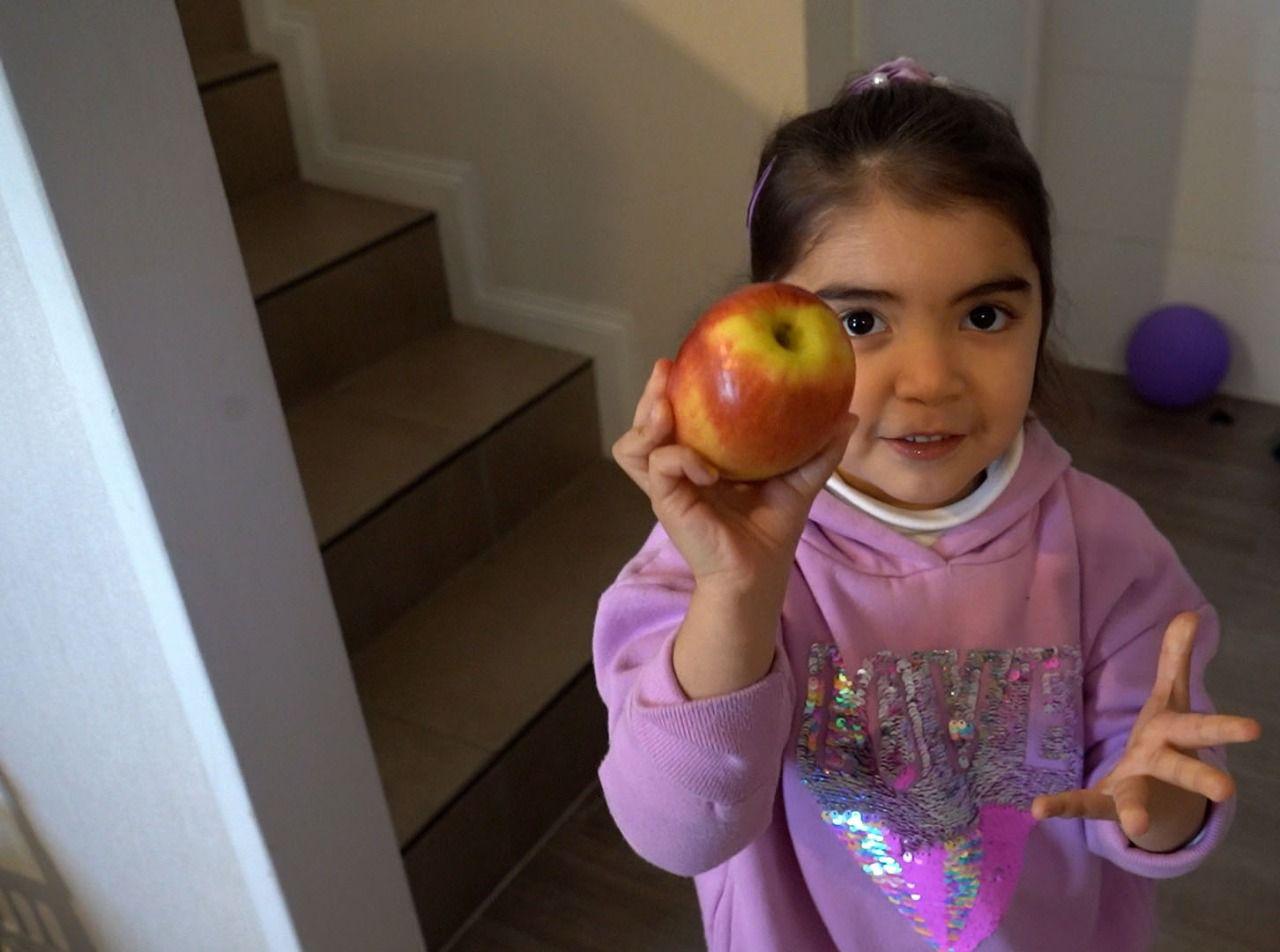 """Lanzan campaña """"Aliméntate Sano"""" para fomentar mejores hábitos nutricionales en comunidades escolares del Biobío"""